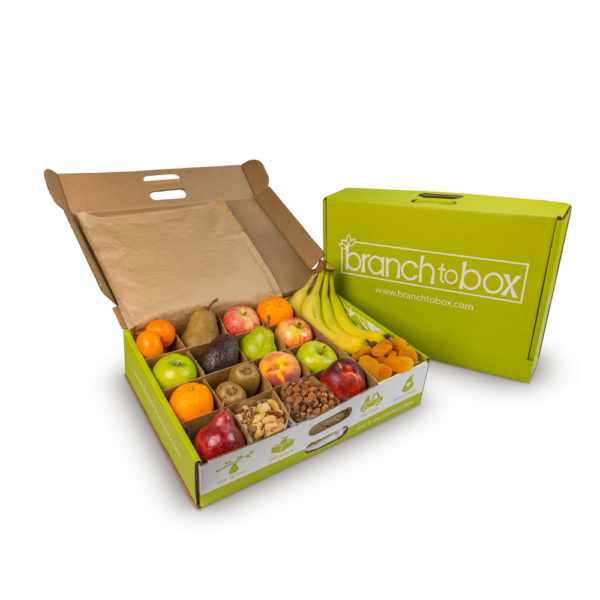 Medium Box - Branch To Box