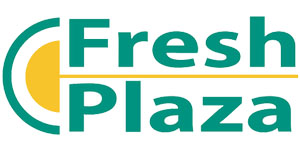 Fresh Plaza - Branch to Box